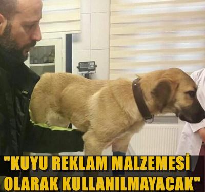 """""""KUYU KÖPEK"""" HAÇİKO DERNEĞİ'NE TESLİM EDİLDİ!.."""
