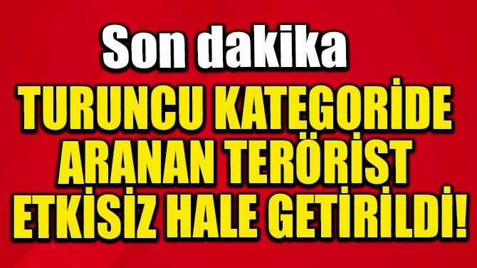 TURUNCU KATEGORİDE ARANAN TERÖRİST ETKİSİZ HALE GETİRİLDİ!