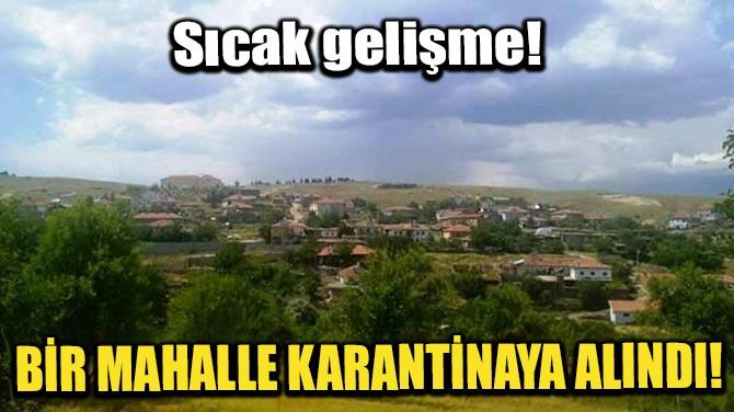 BİR MAHALLE KARANTİNAYA ALINDI!