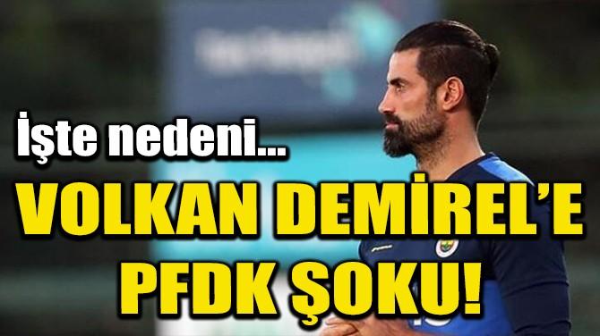 FENERBAHÇE'DEN VOLKAN DEMİREL, PFDK'YA SEVK EDİLDİ!