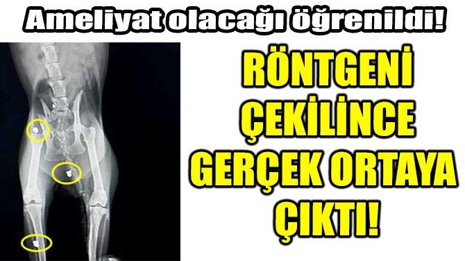 RÖNTGENİ ÇEKİLİNCE GERÇEK ORTAYA ÇIKTI!