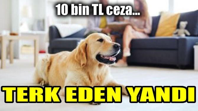 TERK EDEN YANDI