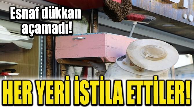 HER YERİ İSTİLA ETTİLER!