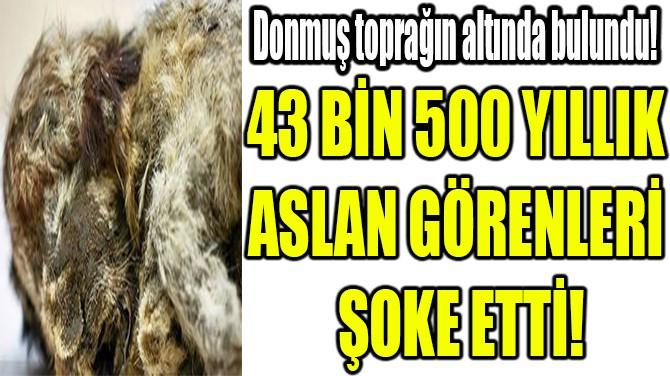 43 BİN 500 YILLIK  ASLAN GÖRENLERİ  ŞOKE ETTİ!