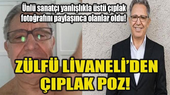 ZÜLFÜ LİVANELİ'DEN ÇIPLAK POZ!