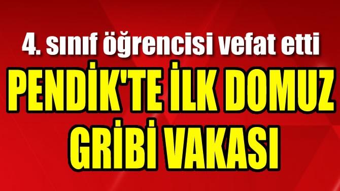 PENDİK'TE İLK DOMUZ GRİBİ VAKASI