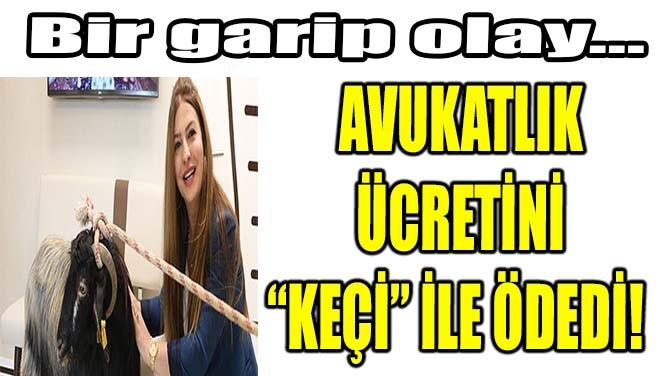 """AVUKATLIK ÜCRETİNİ  """"KEÇİ"""" İLE ÖDEDİ!"""
