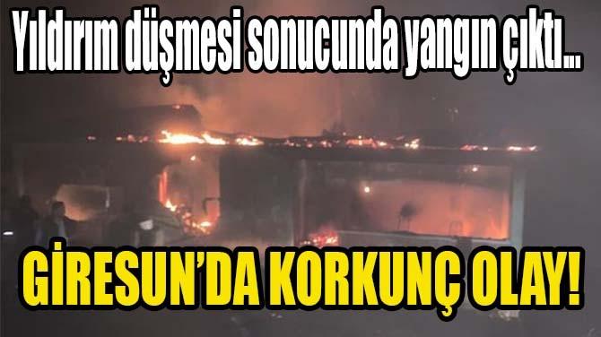 GİRESUN'DA KORKUNÇ OLAY!