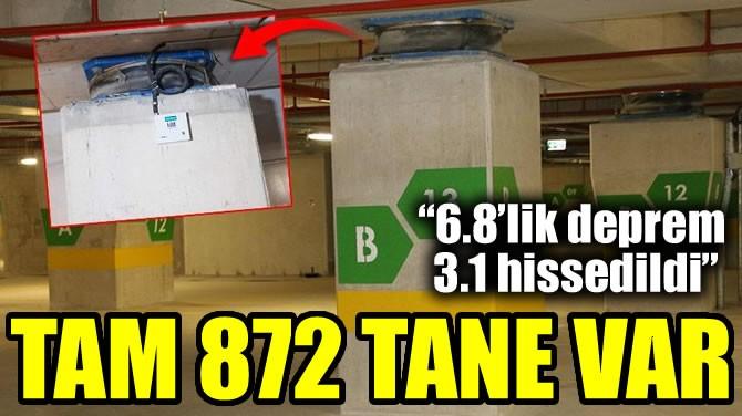 TAM 872 TANE VAR