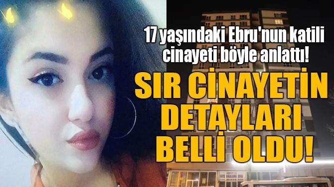 SIR CİNAYETİN DETAYLARI BELLİ OLDU!