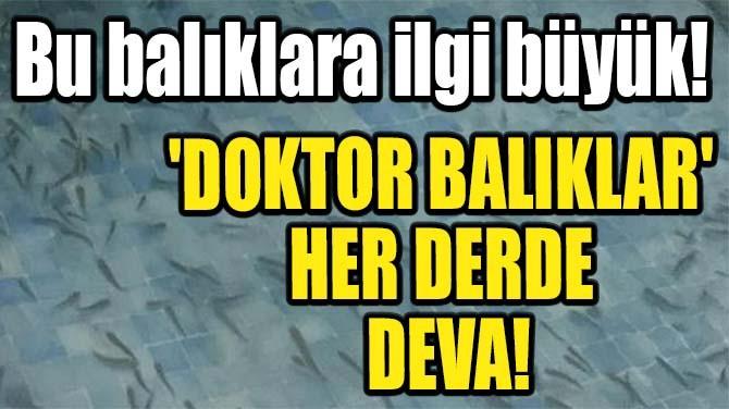 """""""DOKTOR BALIKLAR"""" O İLİMİZDE!"""