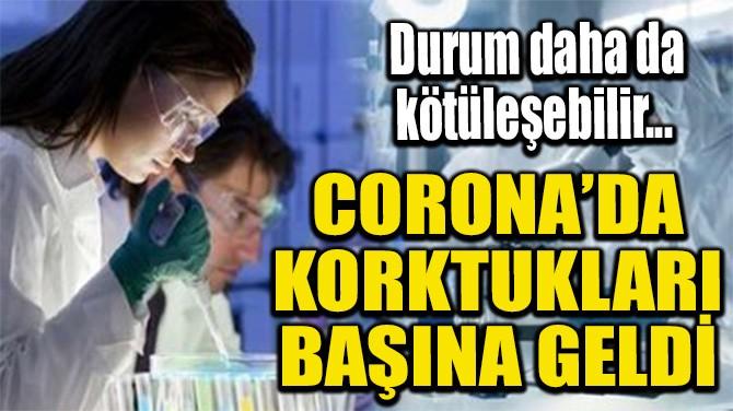 CORONA'DA KORKTUKLARI BAŞINA GELDİ