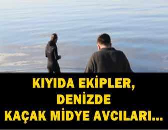 POLİS VE ZABITA EKİPLERİNİ GÖREN AVCILAR DENİZE KAÇTI!..