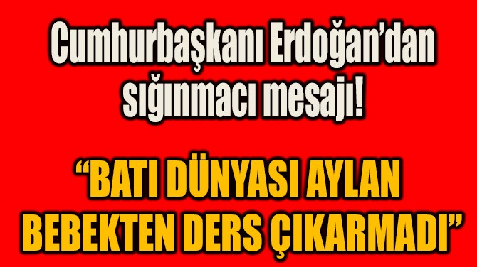 """""""BATI DÜNYASI AYLAN  BEBEKTEN DERS ÇIKARMADI"""""""