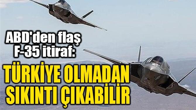 """""""TÜRKİYE OLMADAN  SIKINTI ÇIKABİLİR"""""""