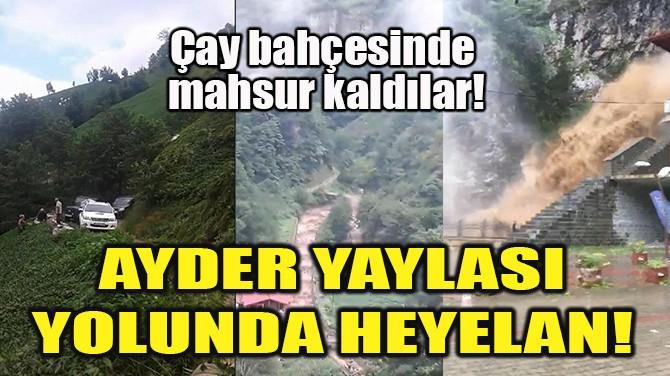 AYDER YAYLASI YOLUNDA HEYELAN!