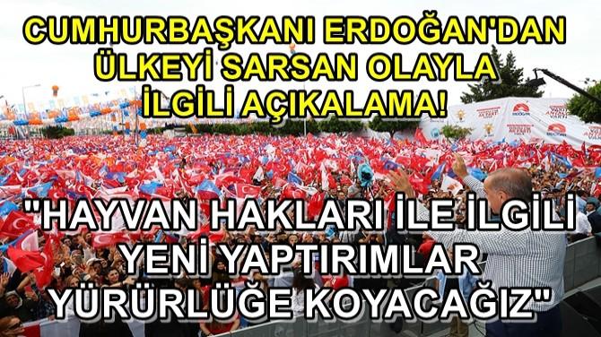 CUMHURBAŞKANI ERDOĞAN'DAN FLAŞ YAVRU KÖPEK AÇIKLAMASI!