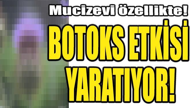 BOTOKS ETKİSİ YARATIYOR!