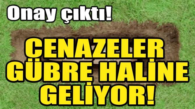 CENAZELER GÜBRE HALİNE GELİYOR!