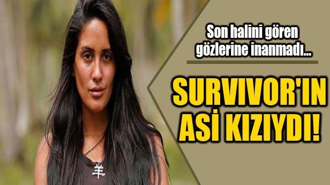 SURVIVOR'IN ASİ KIZIYDI!