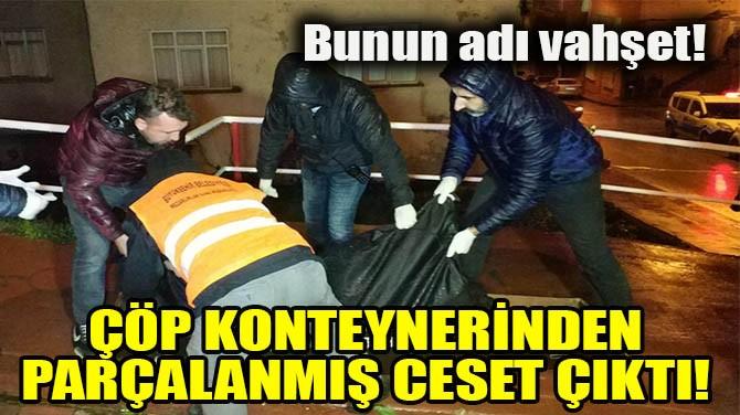 BUNUN ADI VAHŞET!