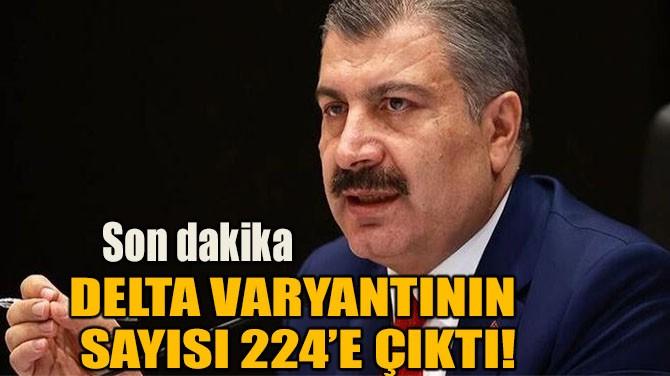 DELTA VARYANTININ SAYISI 224'E ÇIKTI!