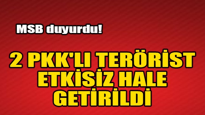 2 PKK'LI TERÖRİST ETKİSİZ HALE GETİRİLDİ