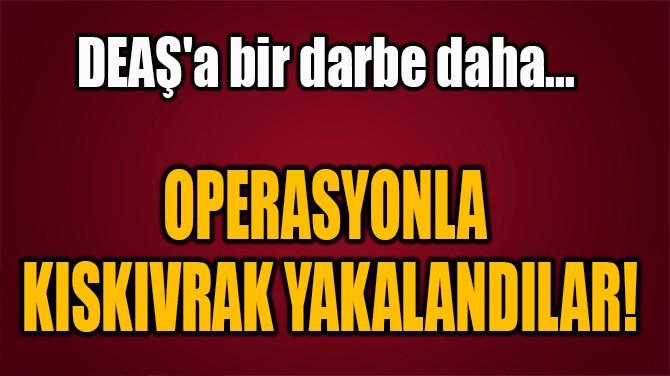 OPERASYONLA KISKIVRAK YAKALANDILAR!
