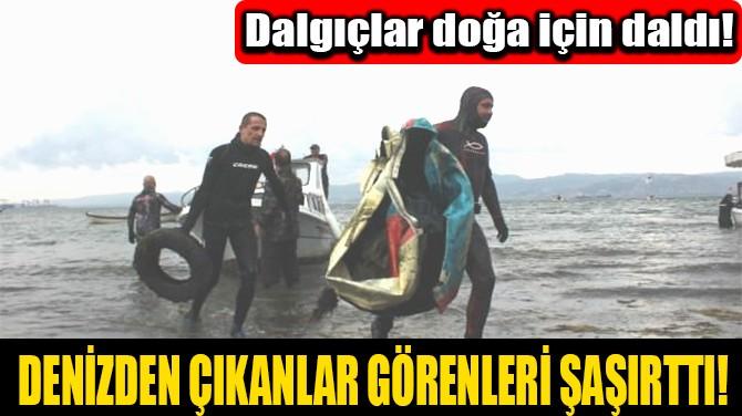 DENİZDEN ÇIKANLAR GÖRENLERİ ŞAŞIRTTI!