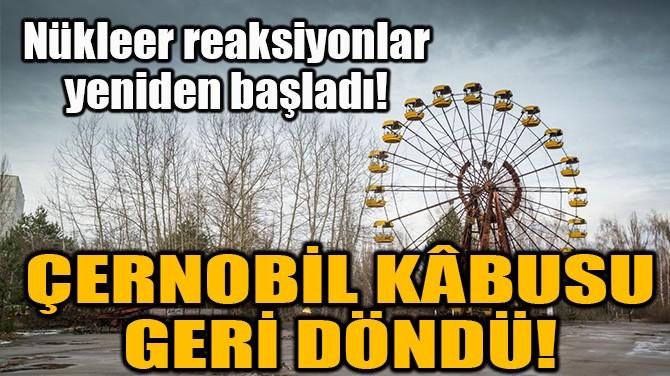 ÇERNOBİL KÂBUSU GERİ DÖNDÜ!