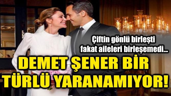 DEMET ŞENER BİR TÜRLÜ YARANAMIYOR!