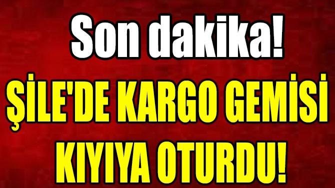 ŞİLE'DE KARGO GEMİSİ  KIYIYA OTURDU!