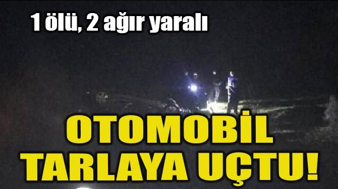 OTOMOBİL TARLAYA UÇTU!