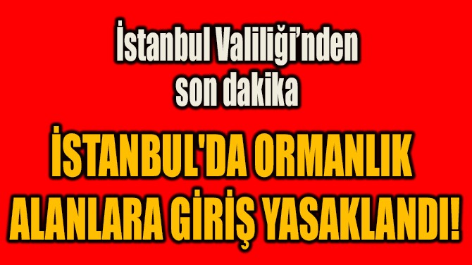 İSTANBUL'DA ORMANLIK  ALANLARA GİRİŞ YASAKLANDI!