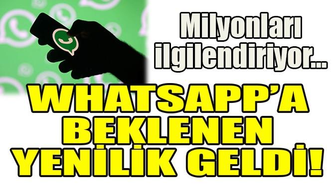 WHATSAPP'A BEKLENEN YENİLİK GELDİ!