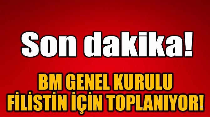 BM GENEL KURULU FİLİSTİN İÇİN TOPLANIYOR!