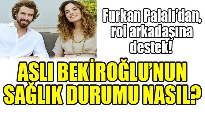 FURKAN PALALI'DAN, ASLI BEKİROĞLU'NA DESTEK!
