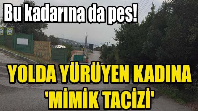 YOLDA YÜRÜYEN KADINA 'MİMİK TACİZİ'