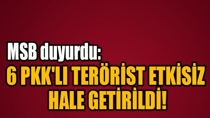 6 PKK'LI TERÖRİST ETKİSİZ  HALE GETİRİLDİ!