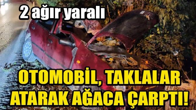 OTOMOBİL, TAKLALAR ATARAK AĞACA ÇARPTI!
