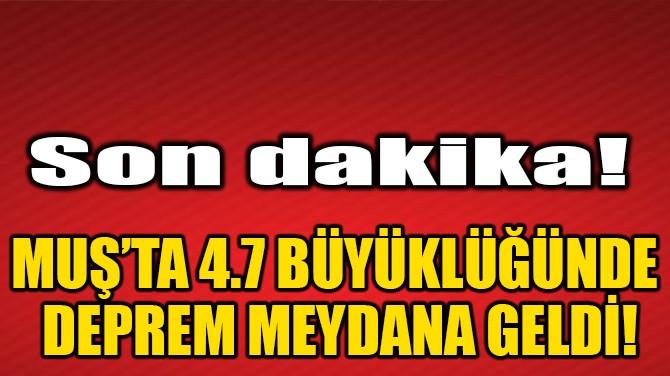 MUŞ'TA 4.7 BÜYÜKLÜĞÜNDE DEPREM MEYDANA GELDİ!