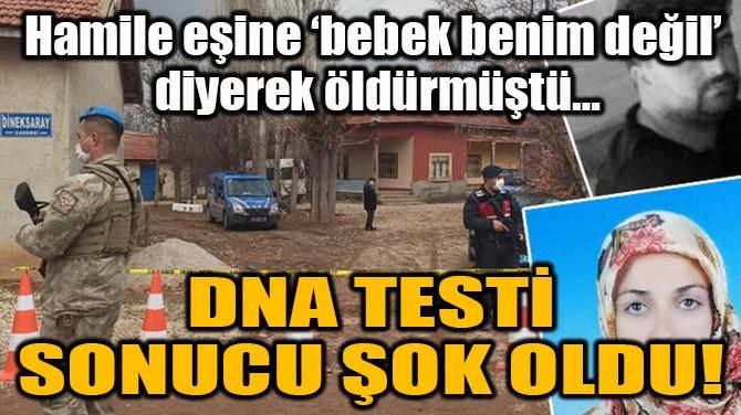 DNA TESTİ SONUCU ŞOK OLDU!