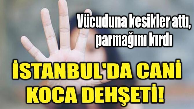 İSTANBUL'DA CANİ KOCA DEHŞETİ!
