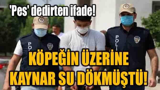 """KÖPEĞİN ÜZERİNE KAYNAR SU DÖKMÜŞTÜ! """"PES"""" DEDİRTEN İFADE!"""