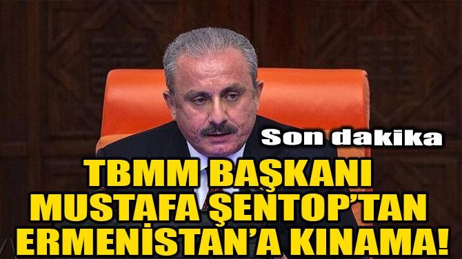 TBMM BAŞKANI MUSTAFA ŞENTOP'TAN ERMENİSTAN'A KINAMA!