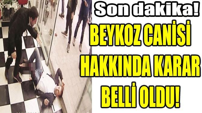 BEYKOZ CANİSİ  HAKKINDA KARAR  BELLİ OLDU!