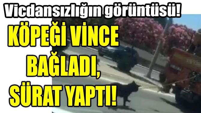 KÖPEĞİ VİNCE BAĞLADI,  SÜRAT YAPTI!