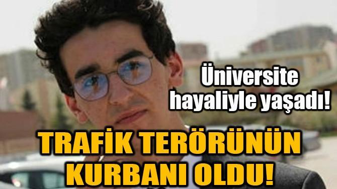 TRAFİK TERÖRÜNÜN KURBANI OLDU!
