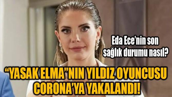 EDA ECE  CORONA'YA YAKALANDI