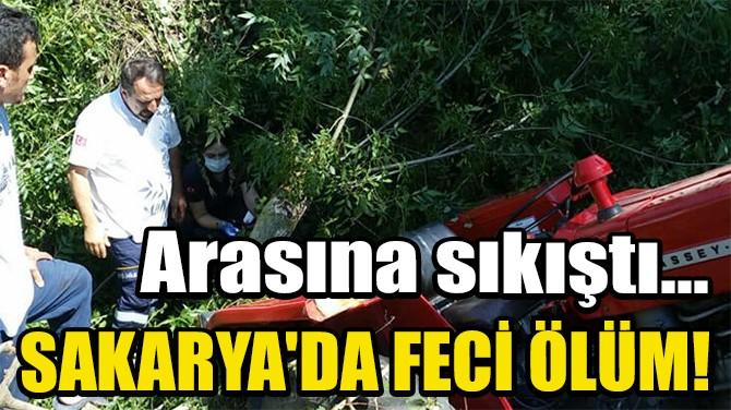 TRAKTÖR İLE TOMRUK ARASINDA SIKIŞIP, ÖLDÜ
